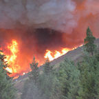 Wikimedia/ file Oregon Forest Fire