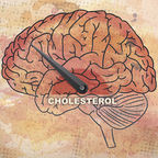 Low Brain Cholesterol—Separating Fact from Fiction