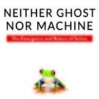 Neither Ghost Nor Machine: The Emergence and Nature of Us