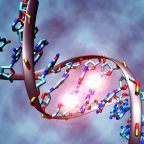 Reviewing the Evidence for Mental Illness Being Epigenetic