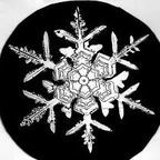 """Snowflake,"" by Wilson Bentley/En.wikipedia.org"