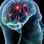 https://upload.wikimedia.org/wikipedia/commons/c/c0/Synapse_in_brain.jpg