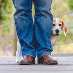 Kellymmiller73/Shutterstock