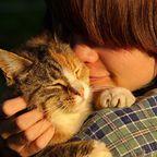 Bonding With Animals
