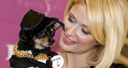 Teen Celebs And Its Owner 119