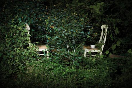 Overgrown Garden Table and Chairs