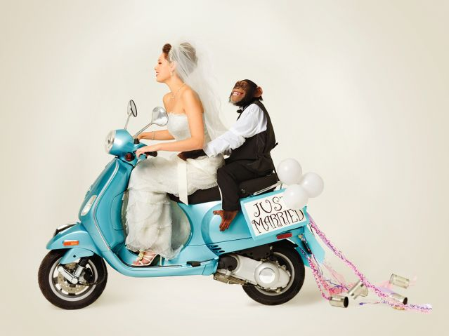 Human bride on scooter with chimp husband - just married