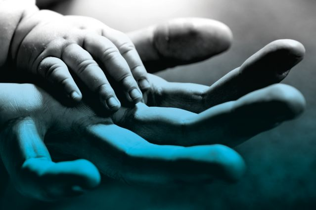 Baby's hand in an adults'