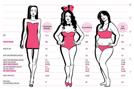 Chart comparing model, playmate and average woman