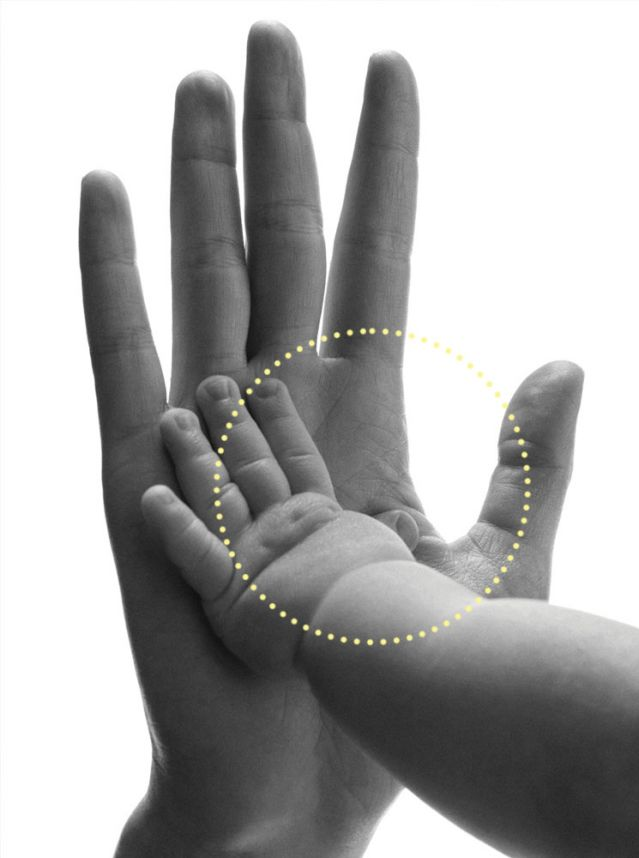 touch. infant hand touching adult touch