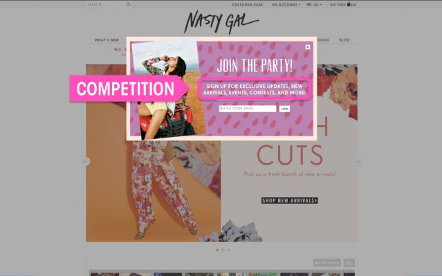 Nasty Gal - website screenshot 2