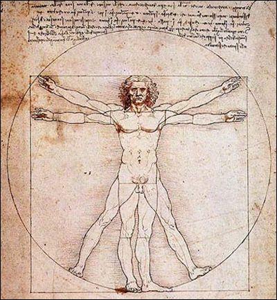 Anatomy Of The Mind 2 Psychology Today