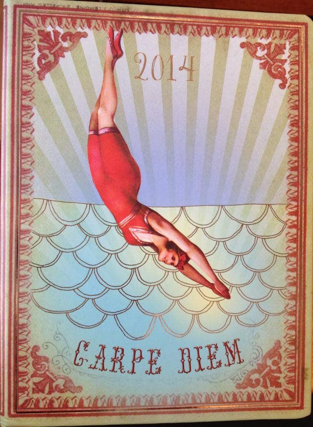 Carpe Diem 2014 Planner by papaya arts -PattyChangAnker.com