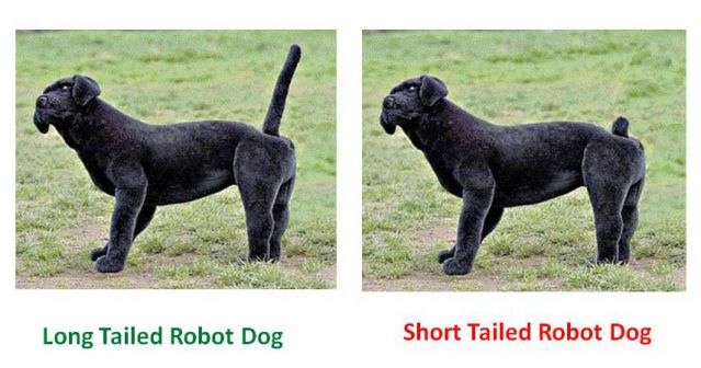 dog dogs canine canines pet pets robot tail wag wagging long short docking