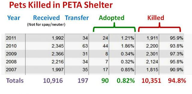 dog cat canine feline PETA euthanize kill shelter adopt