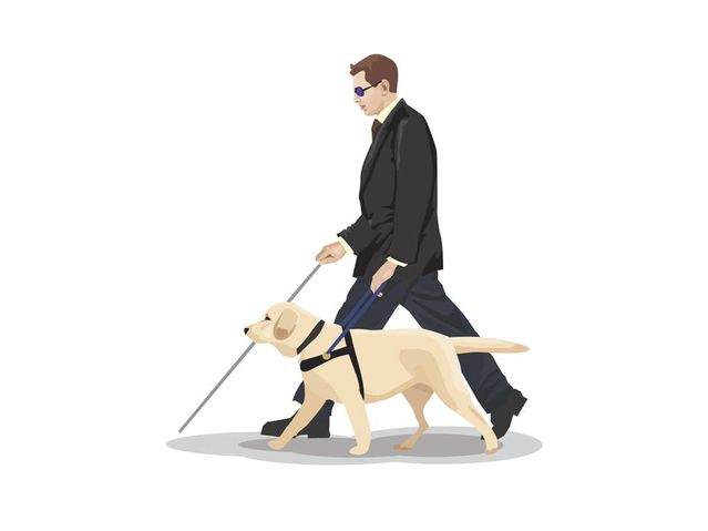 What Assistance Dogs Can And Can T Do Psychology Today