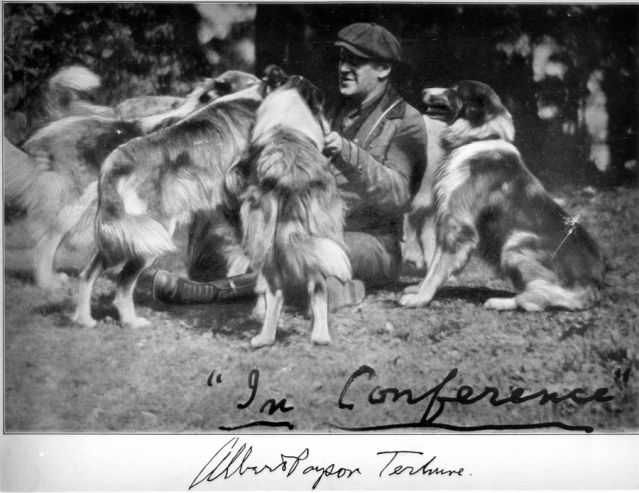 dog pet canine writer novel Albert Payson Terhune rough collies