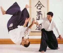 Aikido Test Nerves