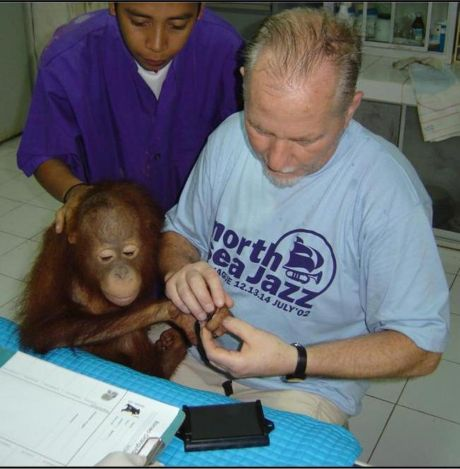 fingerprinting orangutans