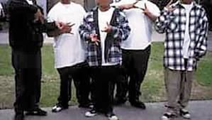 Teen Gangstas | Psychology Today