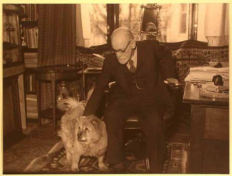 Image result for freud dog chun images