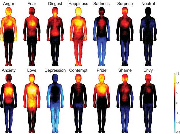 Image result for emotions in the body