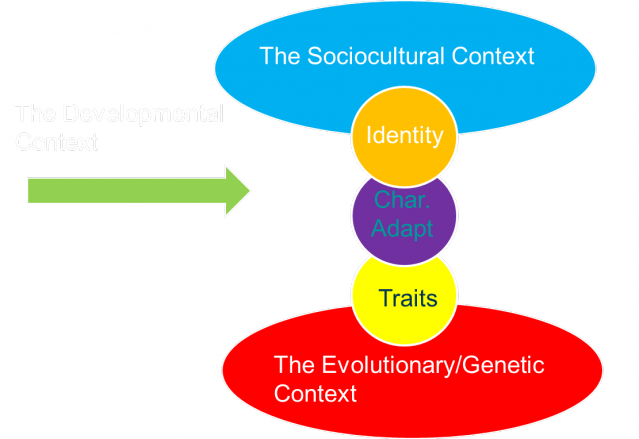 the biological domain personality psychology A major branch of psychology is humanism learn what the humanistic theorists  have to say about how we develop our personality by shreena desai.