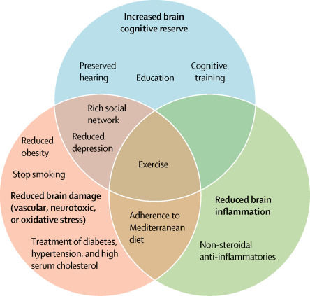 "Preventive Strategies for Dementia. Reprinted from ""Dementia prevention, intervention, and care,"" by G. Livingston, A. Sommerlad, V. Orgeta, S. G. Costafreda, J. Huntley, D. Ames, ... & C. Cooper, 2017, The Lancet."