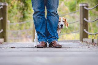 KellyMiller - Shutterstock