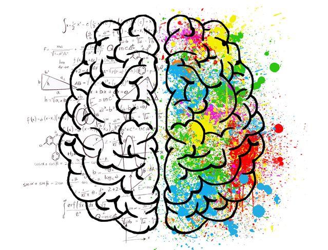 brain-2062057_1920 PixabayElisaRiva