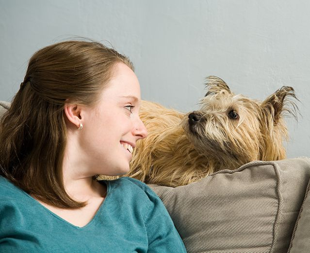 5 signs your dog is emotionally intelligent � anguspost