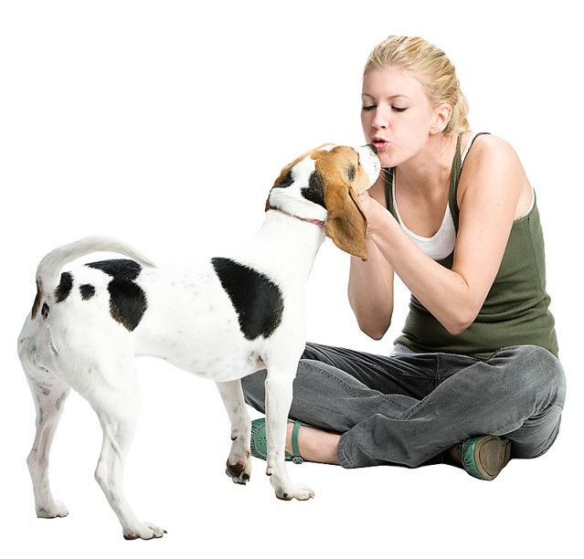 Image result for Health,Benefits,of,Living,with,Pets,Yours,and,Theirs