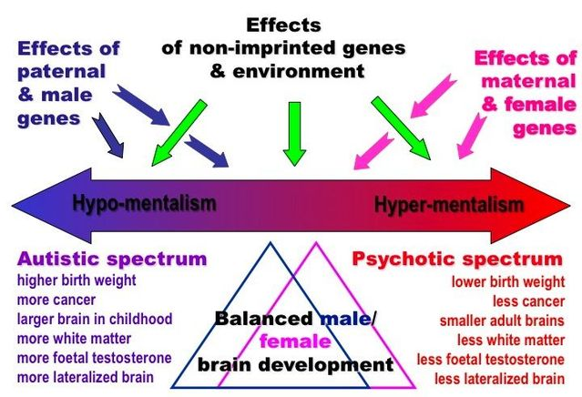 Copy Number, Schizophrenia, and Autism: New Findings | Psychology ...