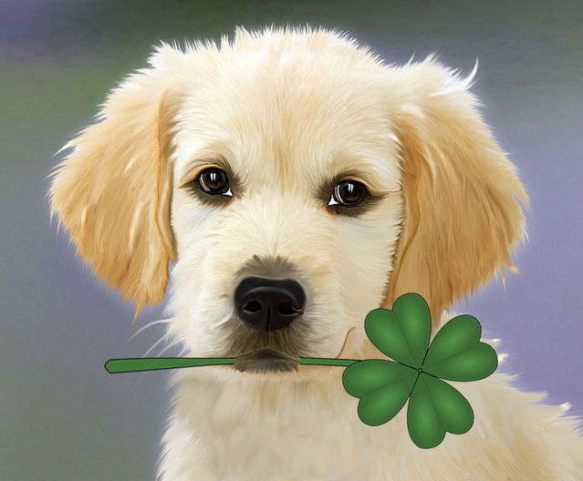 Are There Really Lucky and Unlucky Pet Names? | Psychology Today