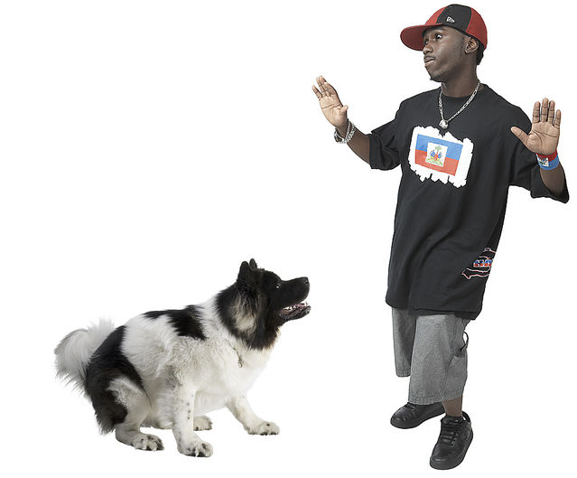 Is It Possible That a Dog Could Be Racist? | Psychology Today