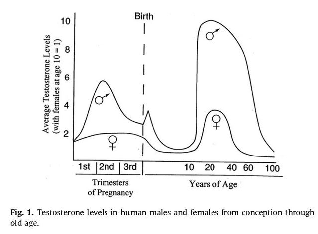 Cognition and sex gender sexual disorders