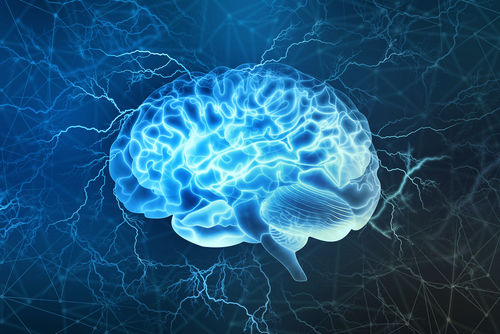brain and mind for better understanding of the dynamic function of mind and its supporting brain mechanism