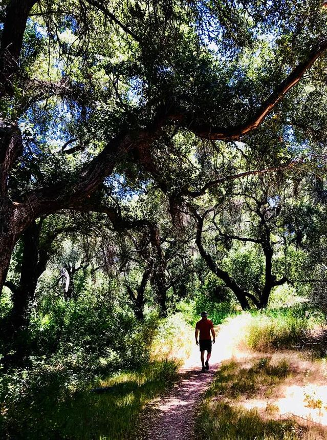 Want to Be More Creative? Walk Like a Caveman | Psychology