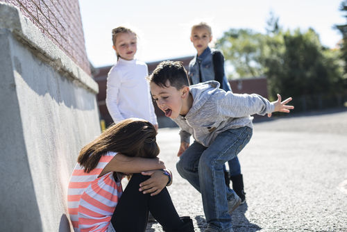 What Neuroscience and Emotion Theory Teach About Bullies