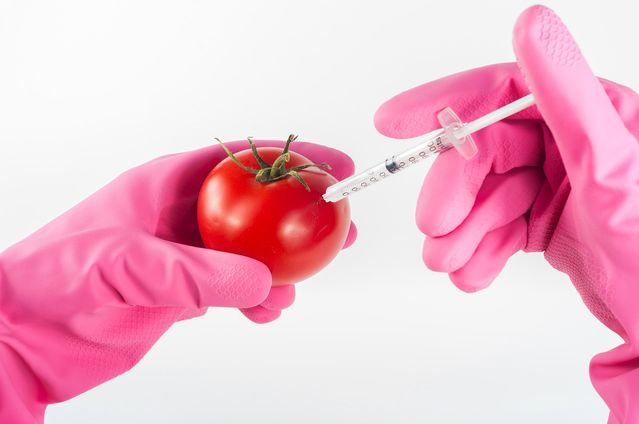 Foes of Genetically Modified Foods Know Less Than They Think