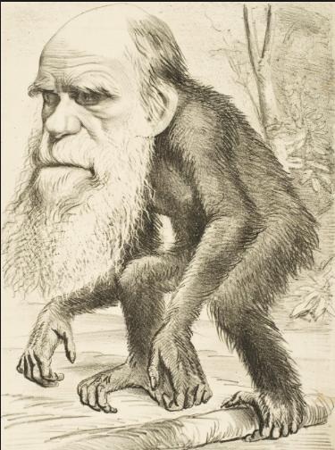 Why Do We Celebrate Darwin Day?