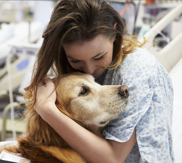 Media Coverage of Pet Therapy Research Often Gets It Wrong