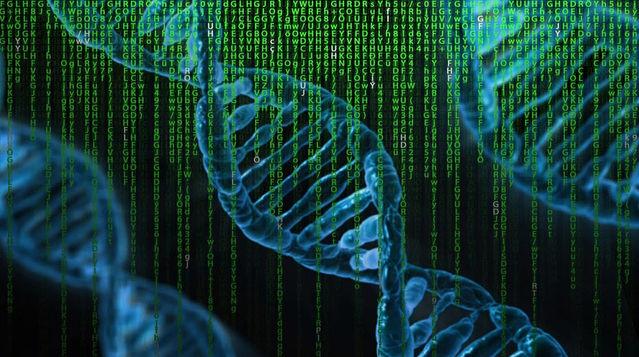 Stanford AI Predicts Cholesterol-raising Genetic Disease