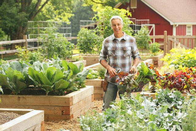 10 Mental Health Benefits of Gardening