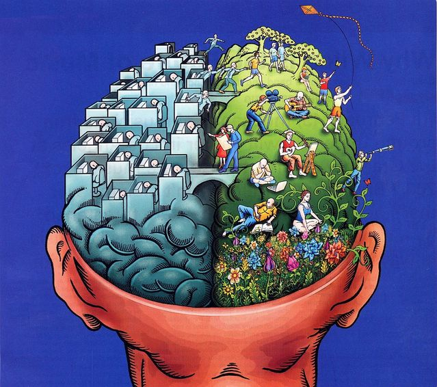 Are You a Left-Brained or Right-Brained Thinker?