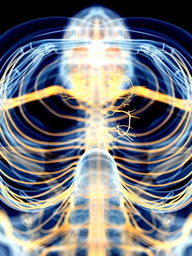 Vagus Nerve Stimulation Dramatically Reduces Inflammation