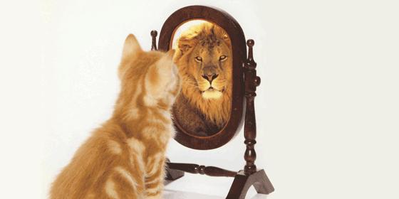 Image result for self esteem lion