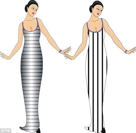 What Makes You Look Fat: Vertical or Horizontal Lines ...