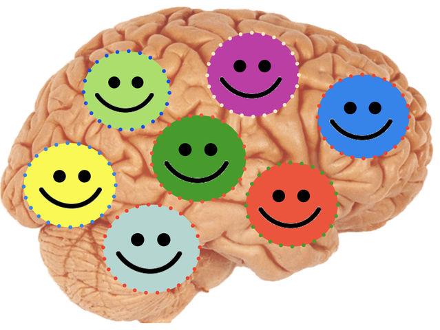 7 Habits of a Happy Brain