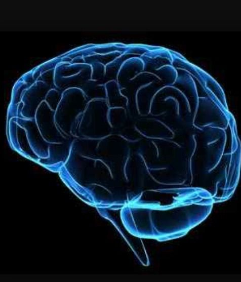 Brain Scan Predicts Best Treatment Approach for Depression ...